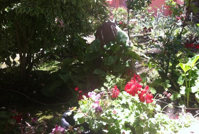 2013-06-22 garden corner